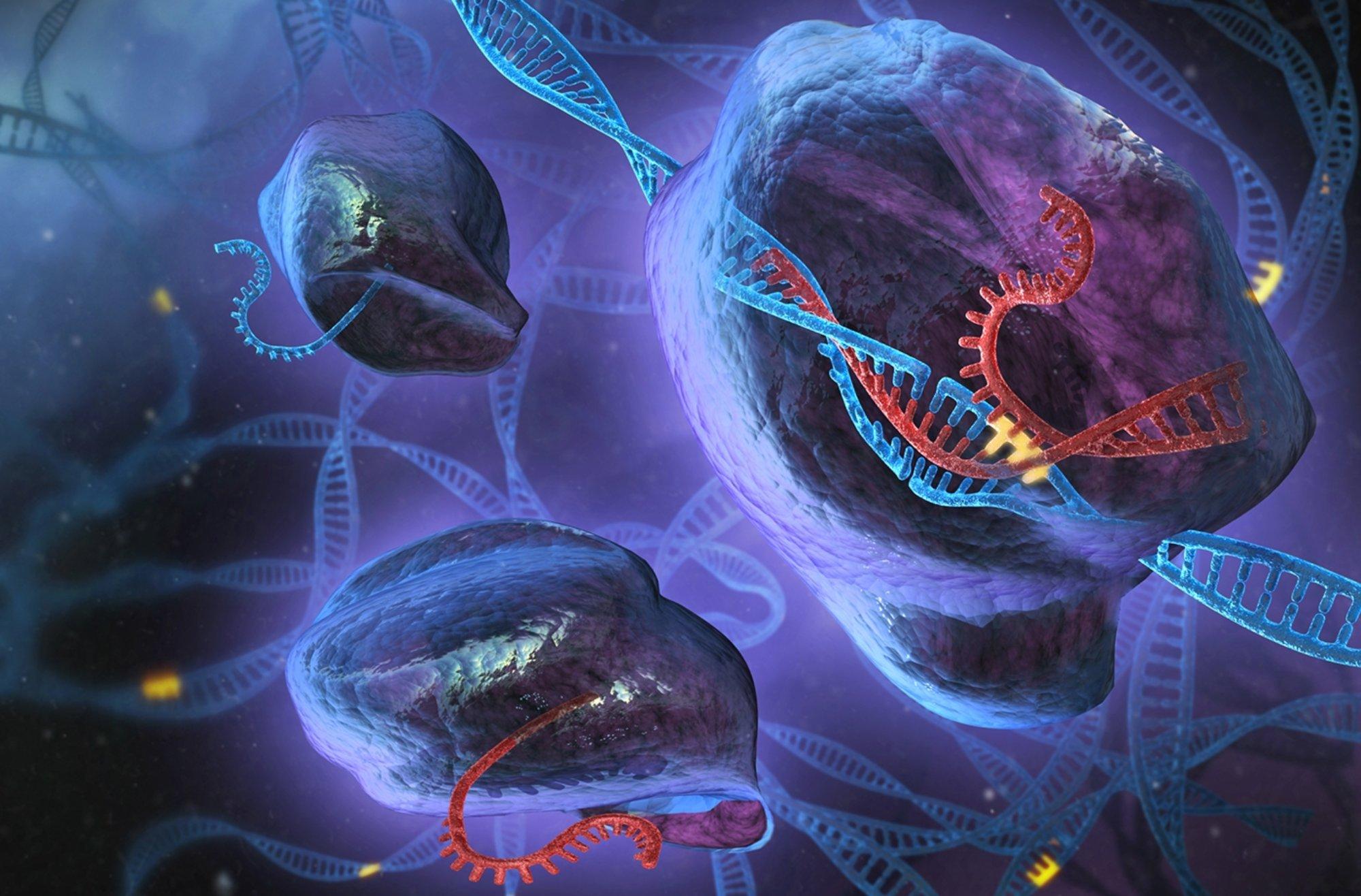 upravovanie DNA imunita