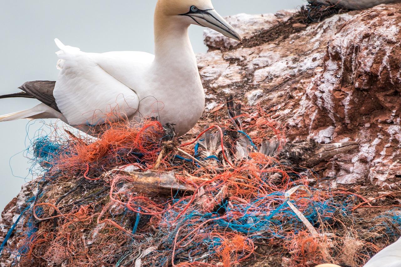 plastovy odpad