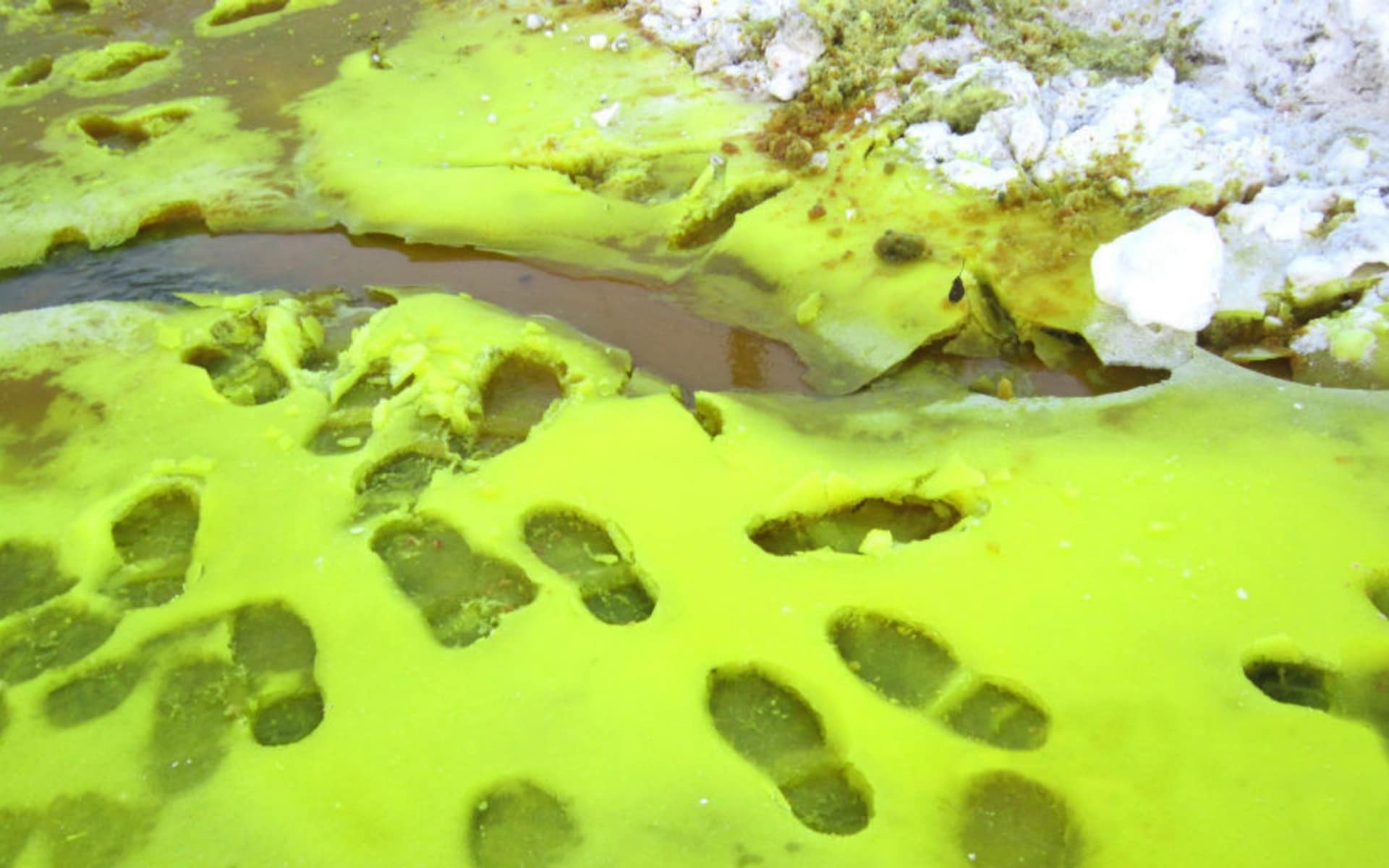 cierny zeleny sneh rusko zivotne prostredie tovaren chrom uhlie znecistenie
